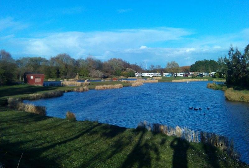 Holiday fishing at Pinetrees Leisure Park